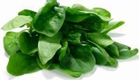 10 самых полезных продуктов при кормлении грудью