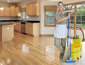 Заговоры против тараканов в квартире и доме - 100% помогут